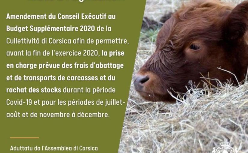 Remerciements à la Collectivité de Corse, l'Assemblée de Corse, le SMAC et l'ODARC pour leur soutien
